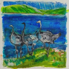 Ostriches #4